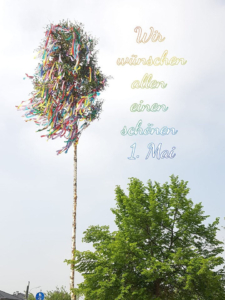 Read more about the article Maibaum 2019